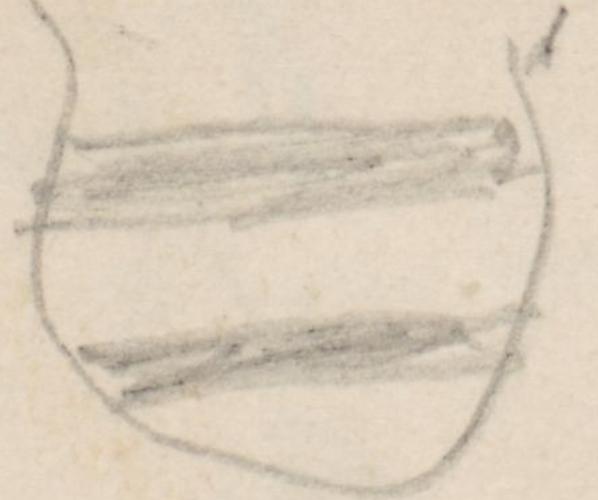 Wappen; Sparr, märk. AdelsfamilieSparrmaerkAFamilie Sparr in der Kirche zu Trampe