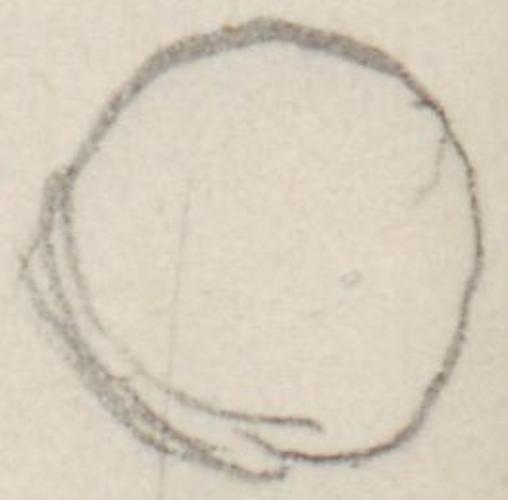 """Gemäldeausschnitt; Abendmahl [Gemälde]Abendmahl[Gemaelde]false14521519florent. Maler, Bildhauer, Architekt, Techniker, Ingenieur und NaturforscherLeonardodaVinciLeonardo da VinciChristuskopf auf Da Vincis """"Abendmahl""""."""