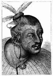 Kopf eines tätowirten Neuseeländers. [Facsimile. Alter Kupferstich.] (S. 151.)