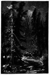 Der Weg zog sich am Saume großer Wälder hin. (S. 55.)