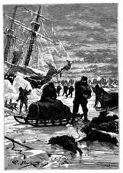 Er lud Proviant und Boote auf Schlitten. (S. 454.)