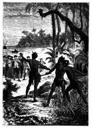 Drei Indianer stürzten aus dem Walde hervor. (S. 165.)