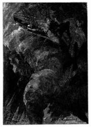 Der »Albatros« wurde in den Wirbel gezogen. (S. 151.)