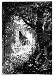 Eine ganze Schaar Kolibris entfloh erschreckt. (S. 298.)