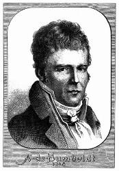 Porträt von A. v. Humboldt. [Facsimile. Alter Kupferstich.] (S. 495.)