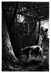 »In dieser Hütte ist ein Mensch gestorben.« (S. 442.)