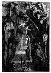 Der Pongo von Manseriche. [Facsimile. Alter Kupferstich.] (S. 490.)