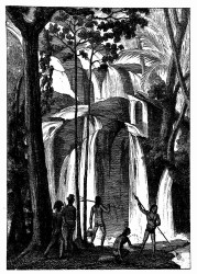 Wasserfall von Port Praslin. [Facsimile. Alter Kupferstich.]