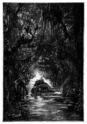 Die Fahrt durch den überschwemmten Wald. (S. 173.)