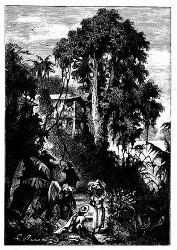 Vom Stromufer aus sah man nur das erste Haus. (S. 28.)