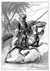 Leibwache des Scheikh von Bornu. [Facsimile. Alter Kupferstich.] (S. 95.)