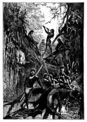 Auf dieser Insel zeigte sich ein Trupp Mura-Indianer. (S. 155.)