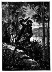 Australischer Eingeborner. (S. 301.)
