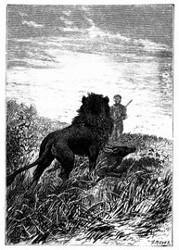 Der Löwe wurde Dick Sand gewahr. (S. 430.)