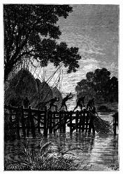 Hastig holten die Eingebornen ihre Netze heraus. (S. 434.)