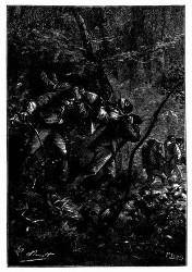 Sie wurden durch die Waldlichtung fortgeschleppt. (S. 45.)