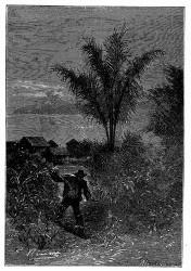 Fragoso verließ die Jangada. (S. 303.)