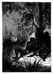 Man hatte sie einfach Hungers sterben lassen. (S. 323)
